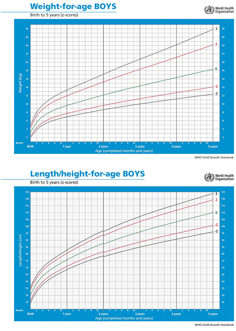 Curve di Crescita OMS Maschio