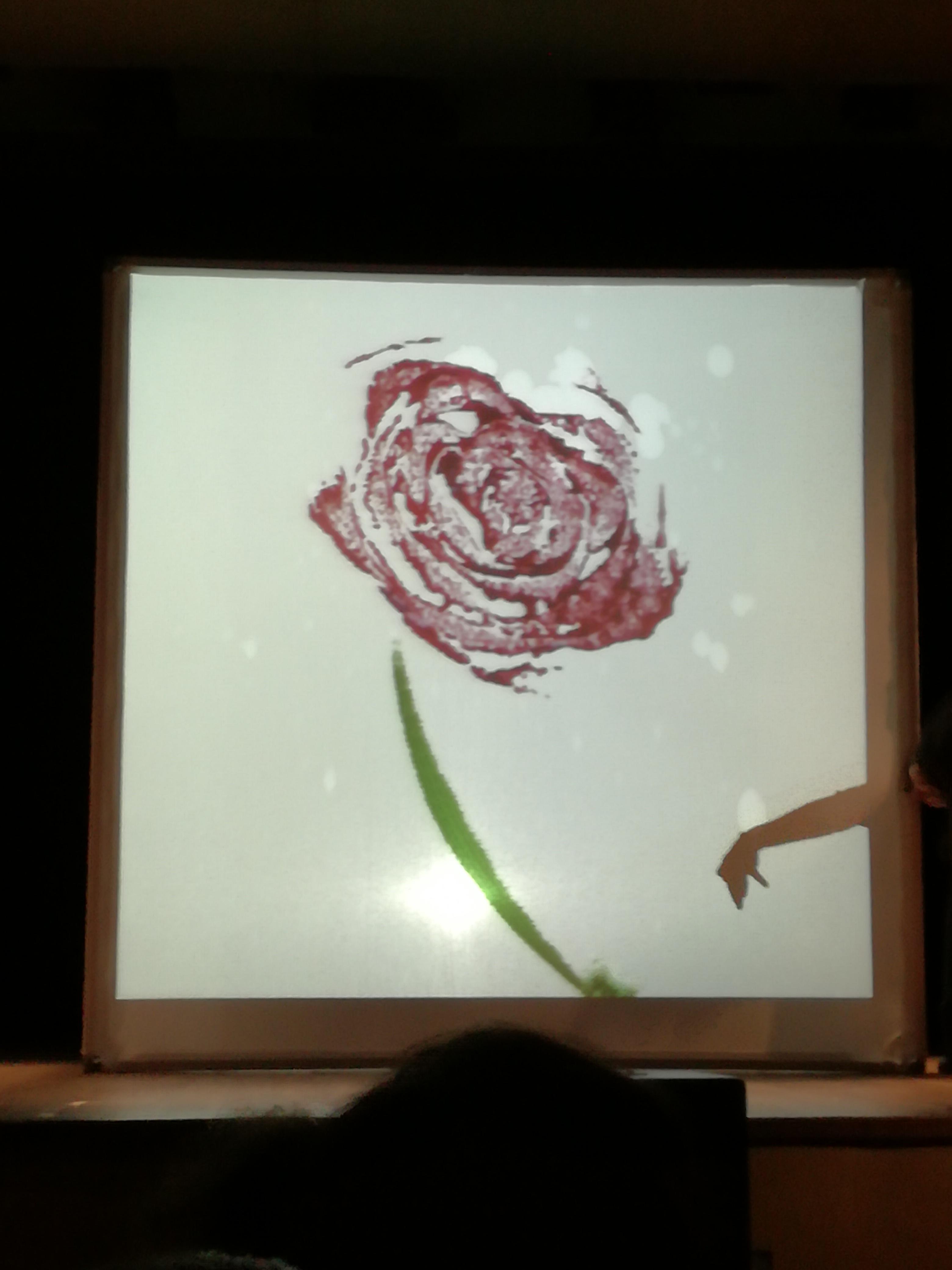 Rose nell'insalata Teatro per i bambini